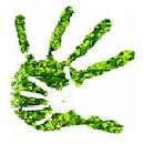 Energietransitie groen handje - Dineke Huizinga - Buurtenergiewinkel - Buurtkamer Corantijn